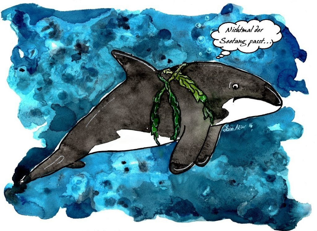 Koloriertes Bild eines Wals