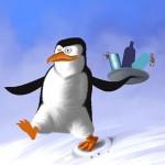 Illustration Pinguin Angel Miguelez