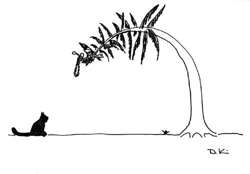 Illustration Elster von Detlef Kiep