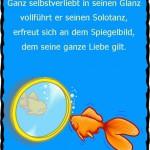 Goldfisch betrachtet Spiegelbild