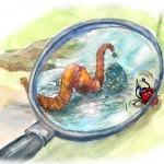 Kinderbuchillustration - Regenwurm unter der Lupe von Agnes Zug