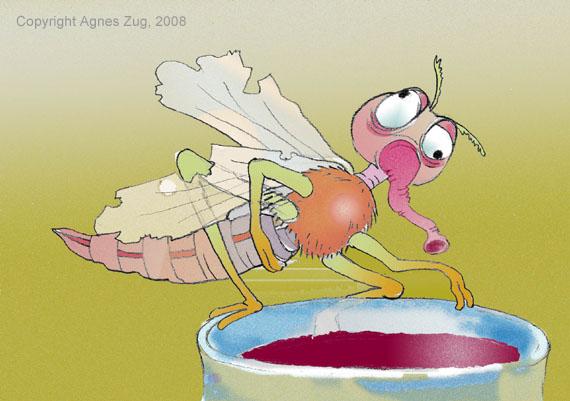 illustration-muecke-von-agnes-zug.jpg